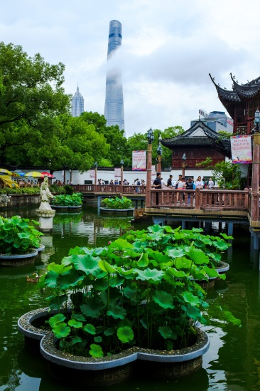 I love the juxtaposition of the ancient gardens in the foreground with massive modern skyscrapers in the background. This is what made Shanghai so interesting to me.