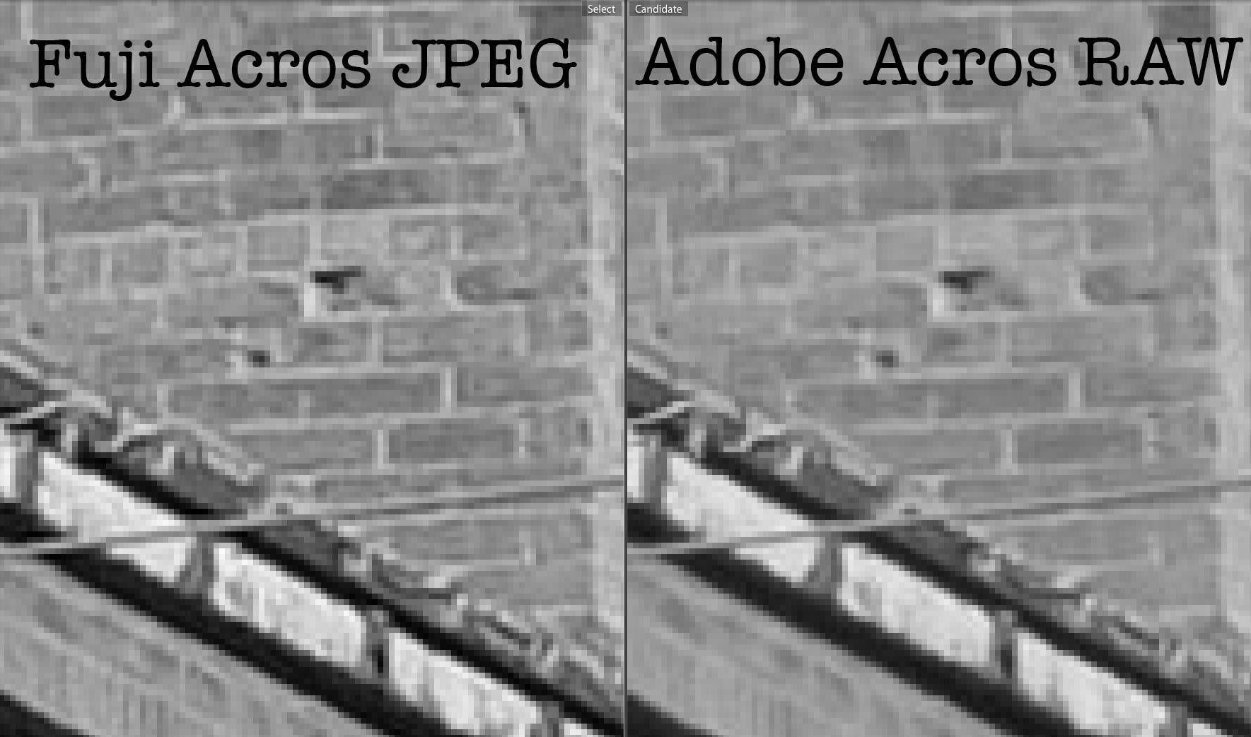 Comparing Fuji's Acros and Monochrome Film Simulations
